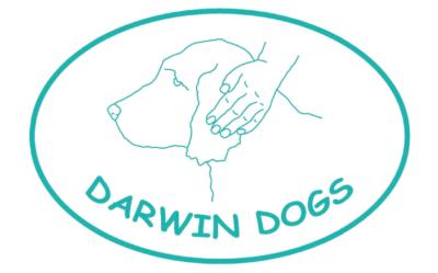 Darwin Dog Logo